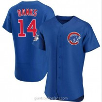 Mens Ernie Banks Chicago Cubs #14 Authentic Royal Alternate A592 Jersey