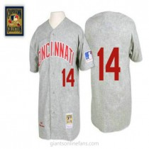Mens Mitchell And Ness Pete Rose Cincinnati Reds #14 Authentic Grey 1969 Throwback A592 Jersey