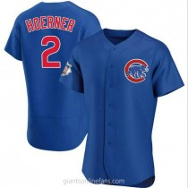 Mens Nico Hoerner Chicago Cubs #2 Authentic Royal Alternate A592 Jersey