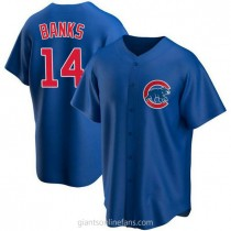 Youth Ernie Banks Chicago Cubs #14 Authentic Royal Alternate A592 Jersey