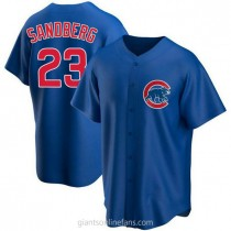 Youth Ryne Sandberg Chicago Cubs #23 Authentic Royal Alternate A592 Jersey